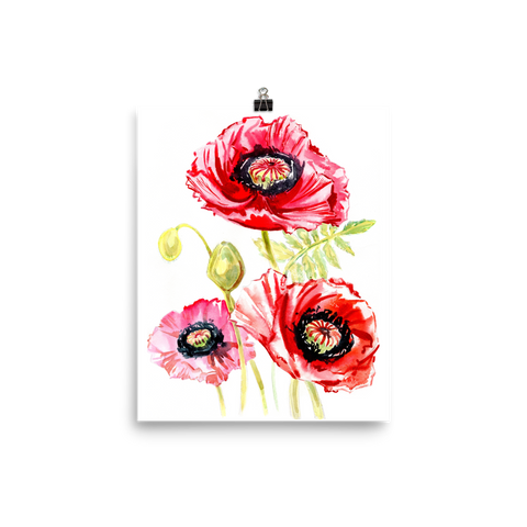 Bright and Floral Poppy Watercolour Matte Poster