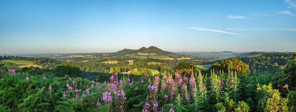 View of Eildon Hills from Scotts View