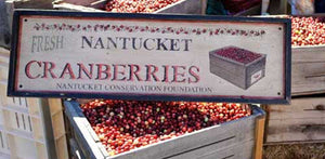 Nantucket Cranberry Season