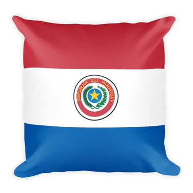 Paraguay Flag Throw Pillow / Paraguay Flag / Throw pillows