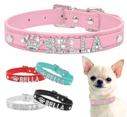 Bling Bling Pet Collar