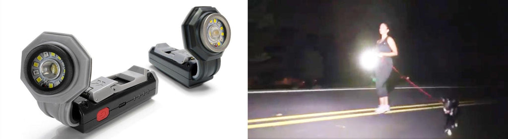 flexit pocket flashlight pic featuring studio pic and female walking a dog w a pocket light pic