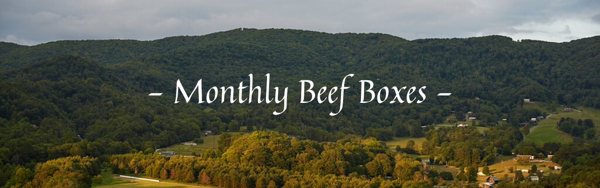 Monthly Beef Boxes
