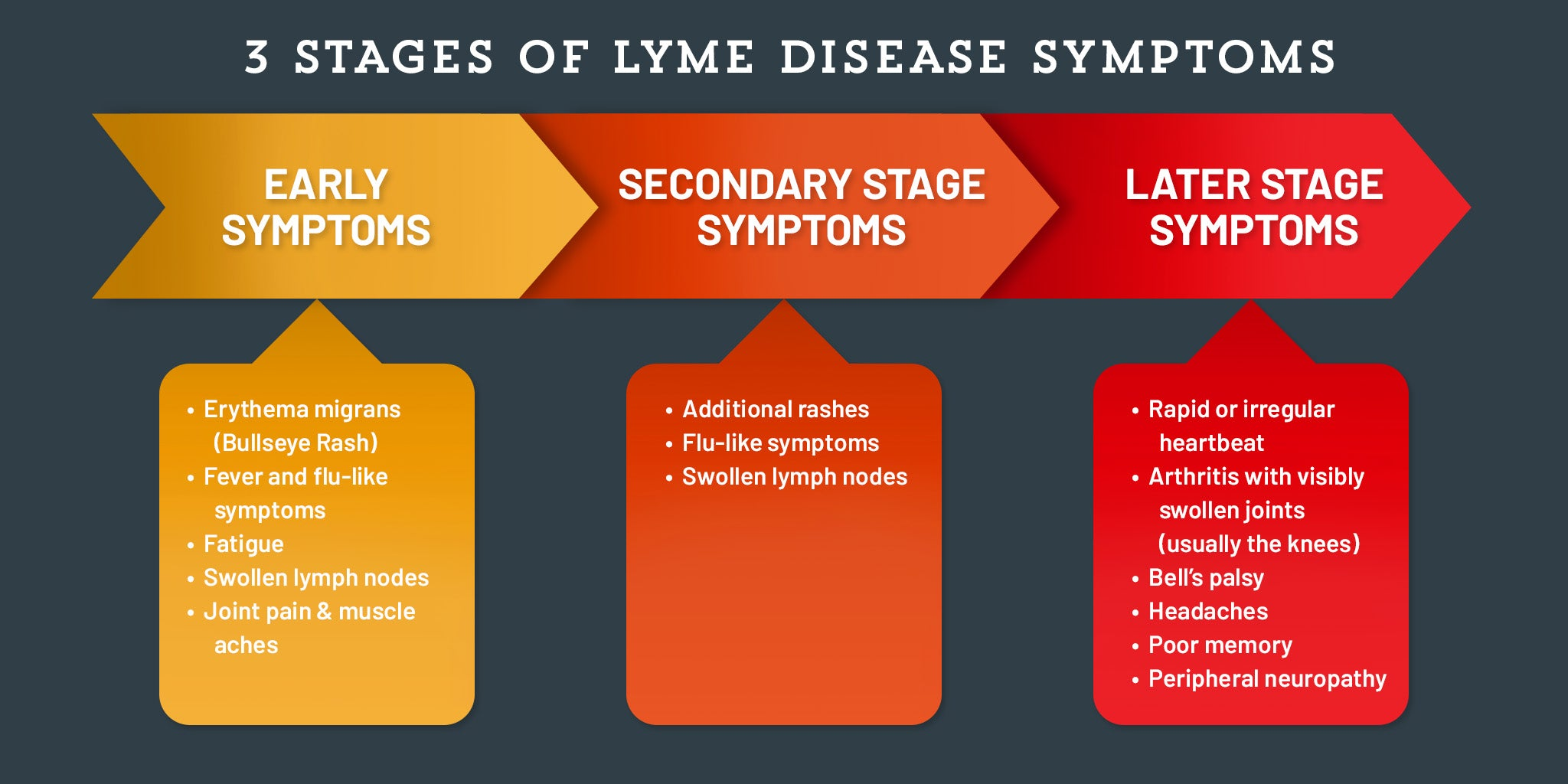 early stage and late stage lyme disease symptoms chart