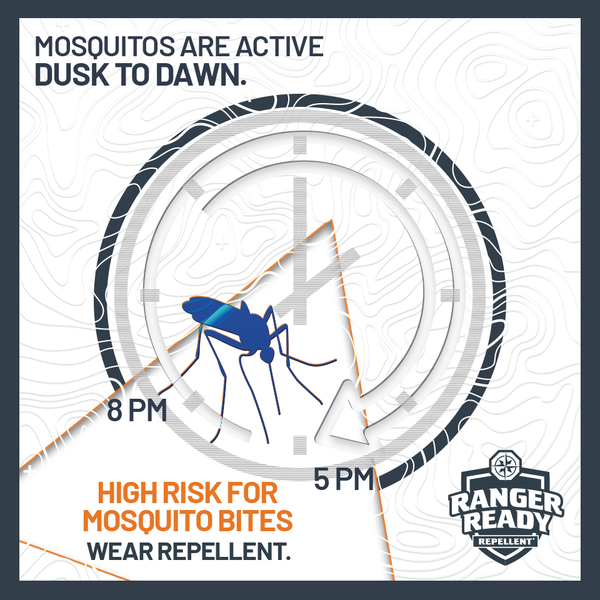 what time do mosquitos come out?