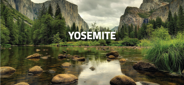 yosemite company retreat, corporate retreat locations, earth missions retreats, earth missions, company retreat