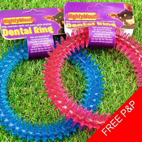 Soft Rubber Dental Dog Ring Toy
