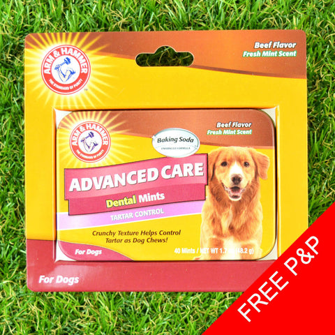 Arm and Hammer Dog Dental Mints & Metal Tin