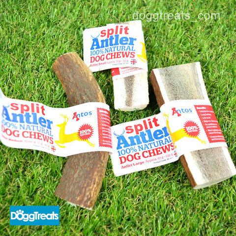 SPLIT ANTLER DOG CHEWS Antos Small Medium Large Stag - 100% Natural - Calcium