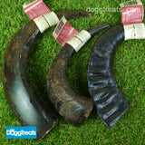 Antos Buffalo Horn Dog Chews