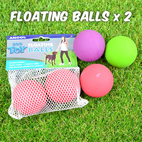 Floating Rubber Balls Dog Toy - 2 Pack