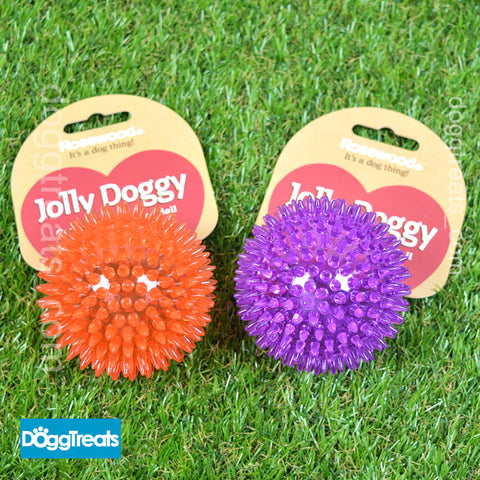 Rosewood Jolly Dog Rubber Spiky Fetch Ball