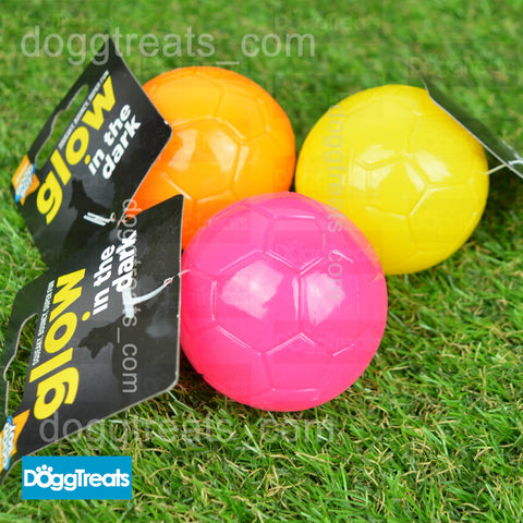Glow in the Dark Squeaky Dog Ball Toy