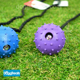 Tough Ball Dog Toy - Rubber Ball with Rope - Durable