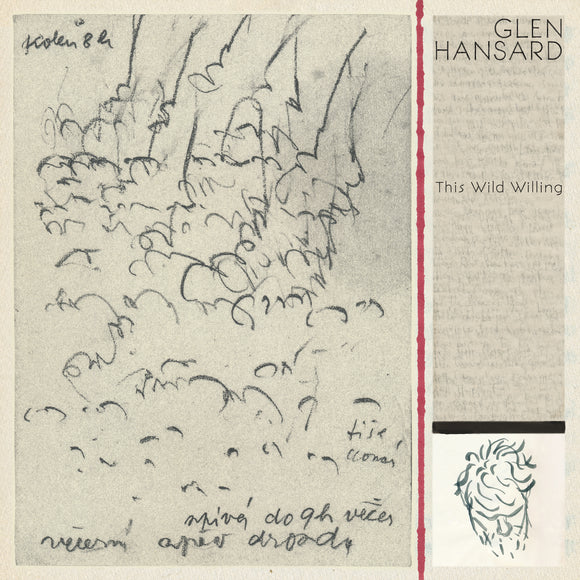 Glen Hansard - This Wild Willing | CD Signed