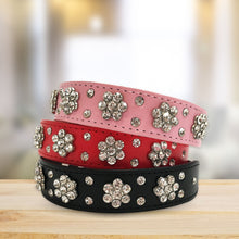 Load image into Gallery viewer, Embellished Dog Collar