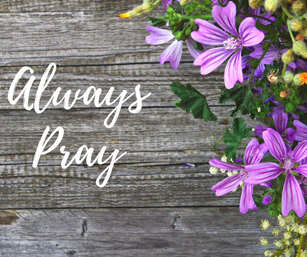 Always Pray with purple flowers on a wood background