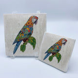 Macaw Coasters and Trivets