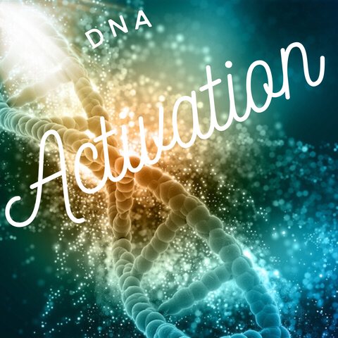 DNA Activation Sessions