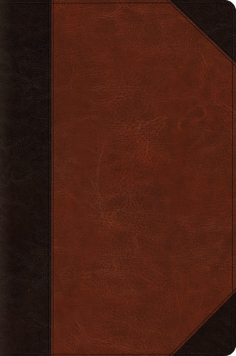 ESV Large Print Bible (TruTone, Brown/Cordovan, Portfolio Design) Imitation Leather