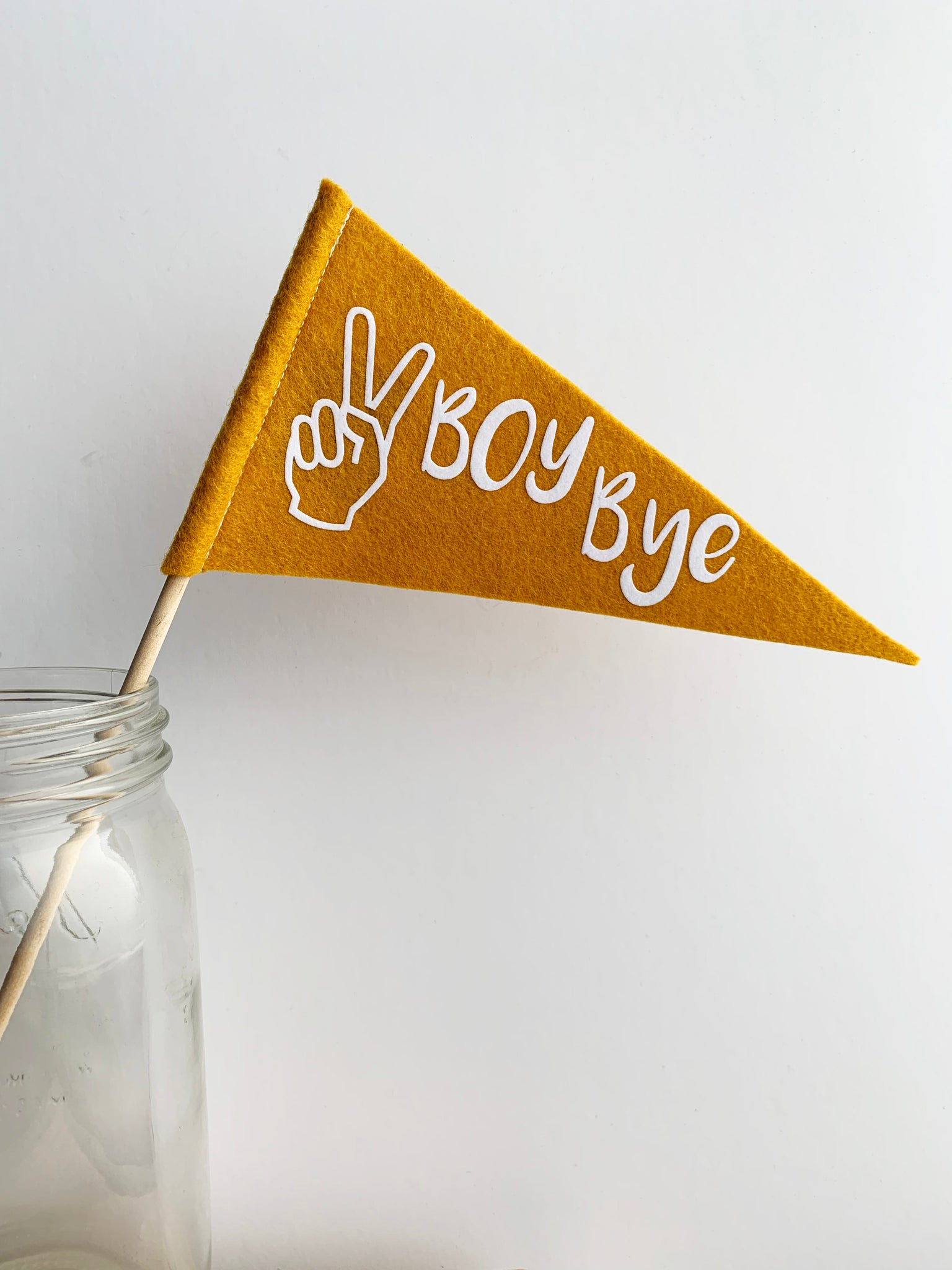 Boy Bye Mini Pennant