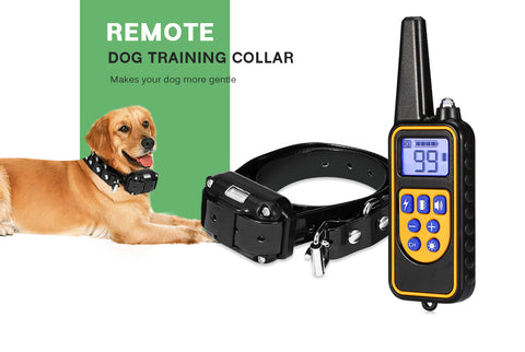 Electric Dog Training Collar With Remote Controller
