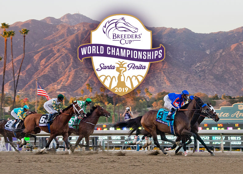 BREEDERS CUP 2019
