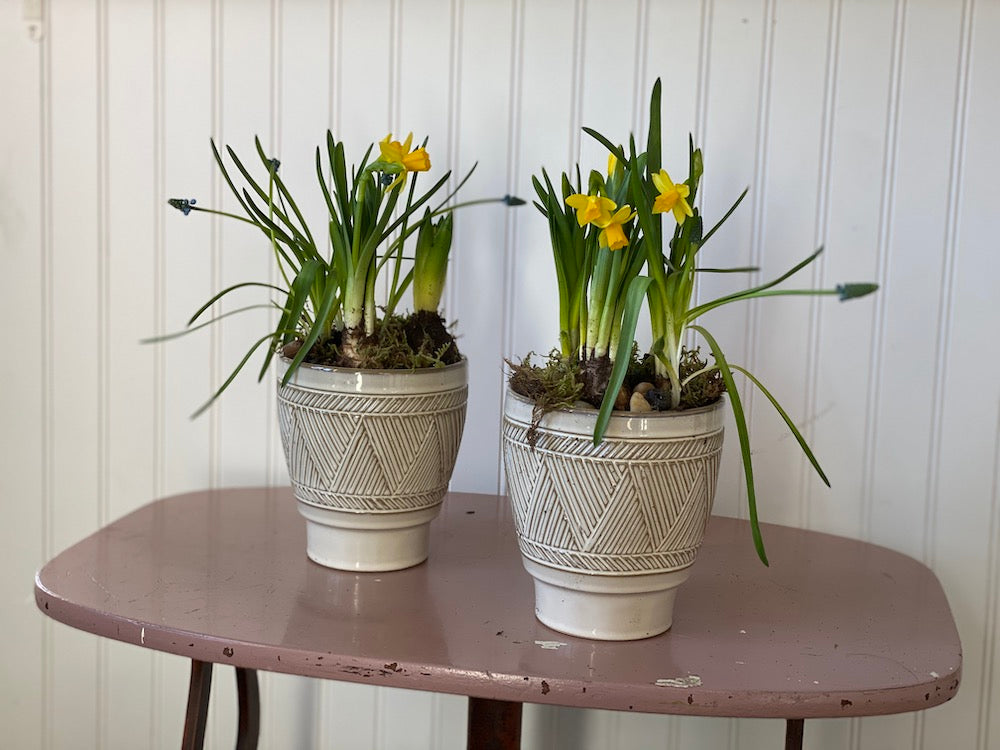 Small Mixed Bulb Planters (Set of 2)