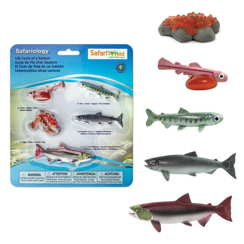 Safari Ltd Life Cycle of a Salmon Figure Set
