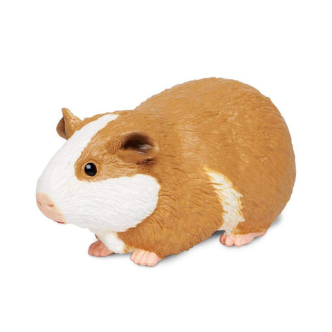 Safari Ltd Guinea Pig Figure