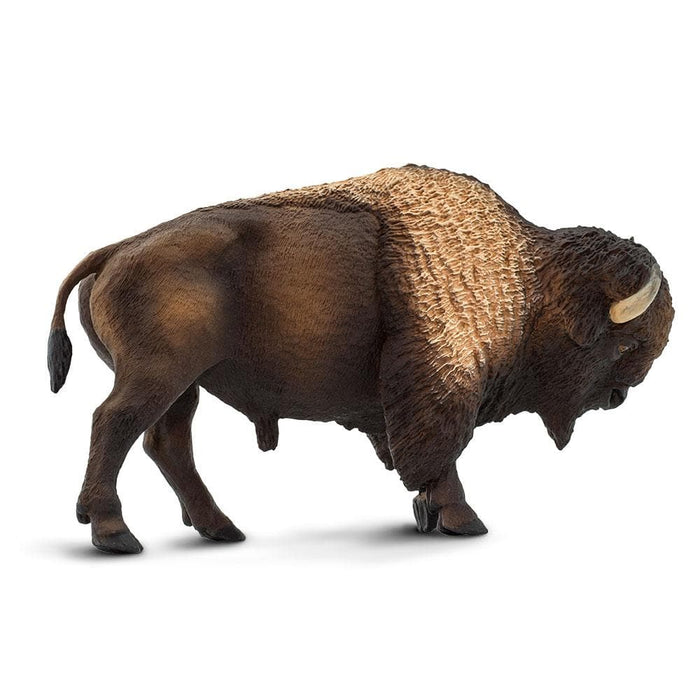 Bison educational toy