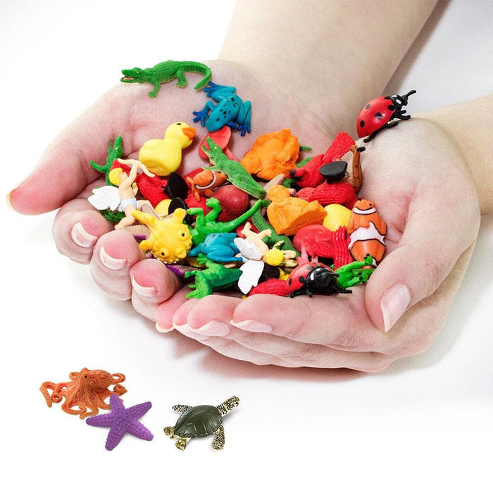 Coral Reef Fun Pack Learning Toys