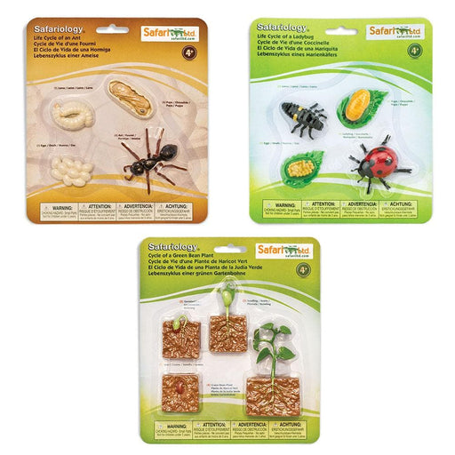 Life Cycle Bundle 2 - Set of 3 Life Cycle Toys