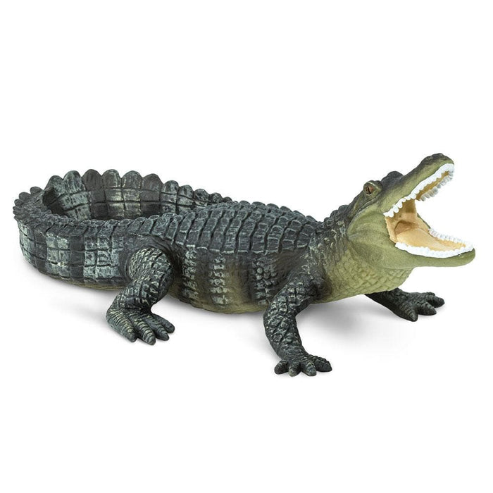 Bernie's Buddies - Set of 4 Toys Alligators Toys for Boys and Girls