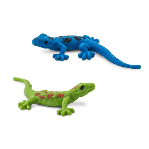 Day Geckos - Good Luck Minis®