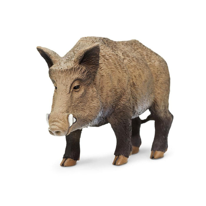 Forest Predators & Prey - Set of 11 Toys Boar