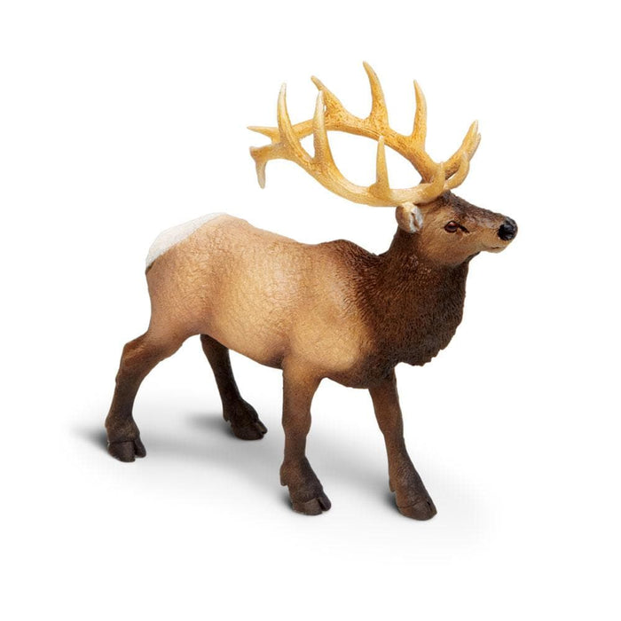 Forest Predators & Prey - Set of 11 Toys Elk