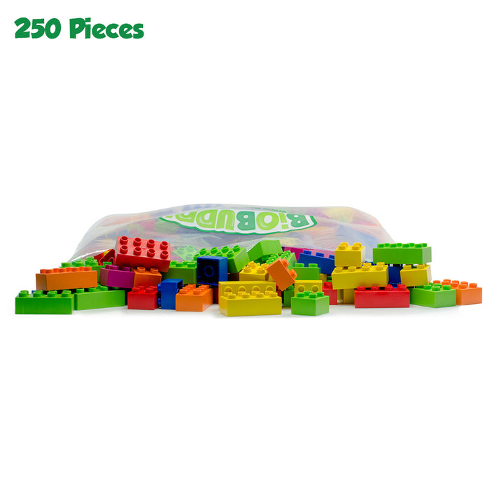 250 pcs BiOBUDDi Assorted Blocks Set
