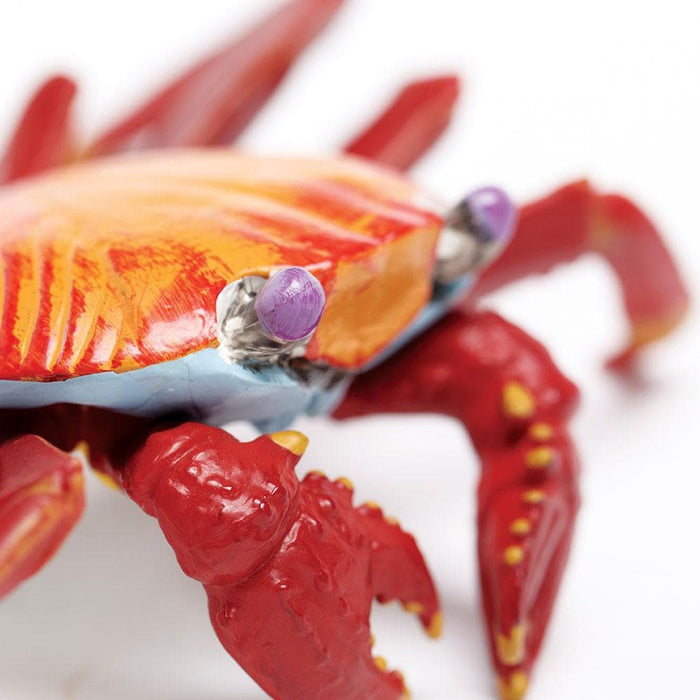 Galapagos Sally Lightfoot Crab Toy