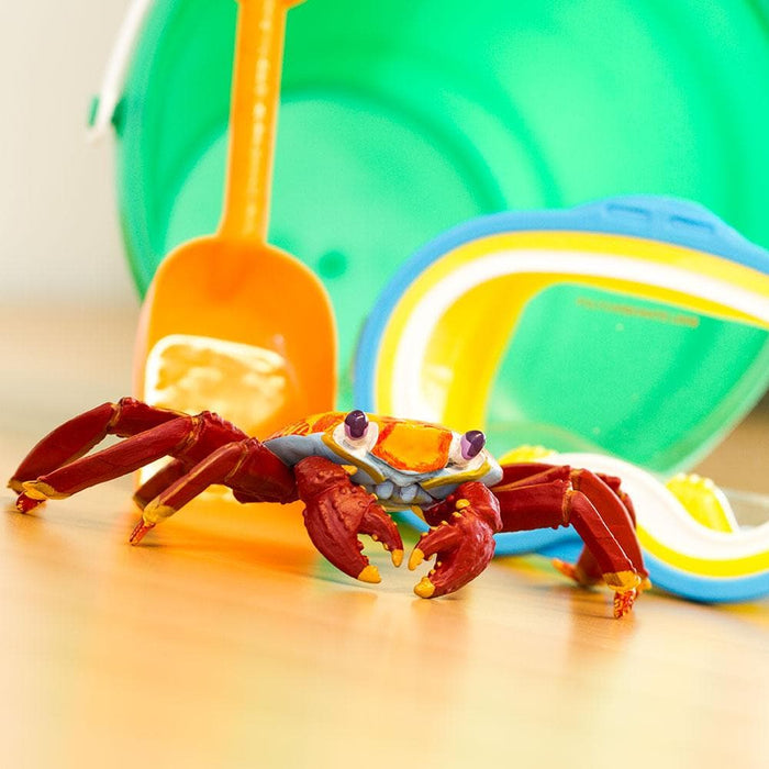 Galapagos Sally Lightfoot Crab Children's Toy