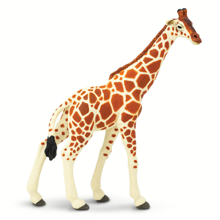 Reticulated Giraffe Educational Toy
