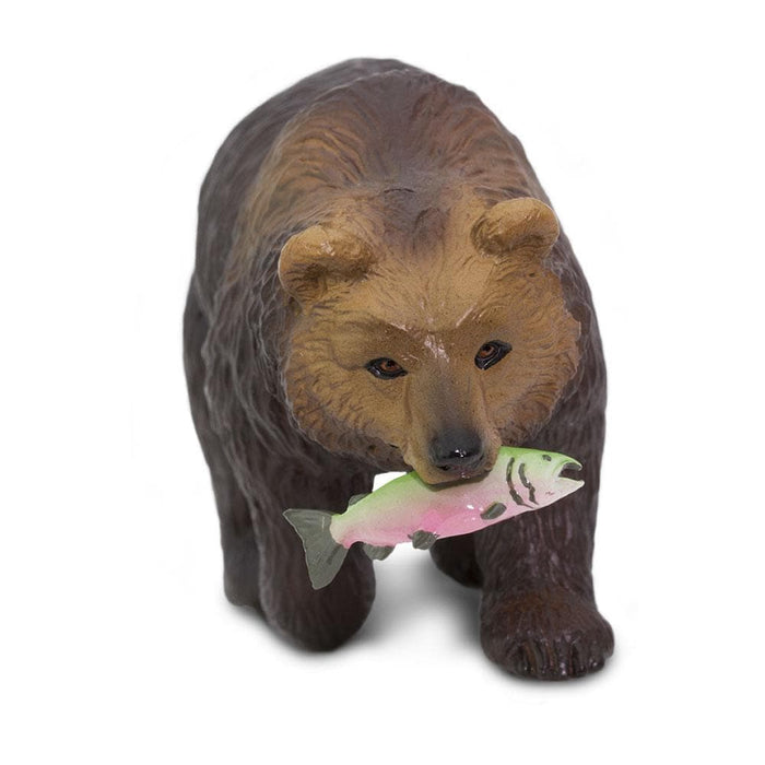 Grizzly Bear Educational Toy