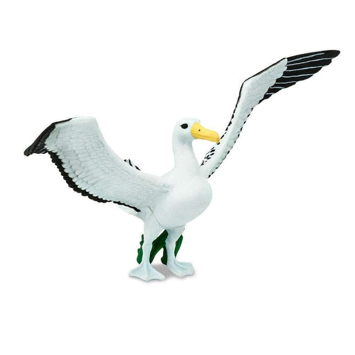 Albatross - Safari Ltd®