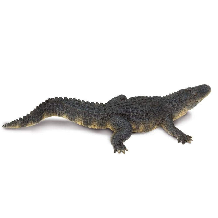 Alligator Toy | Wildlife Animal Toys | Safari Ltd.