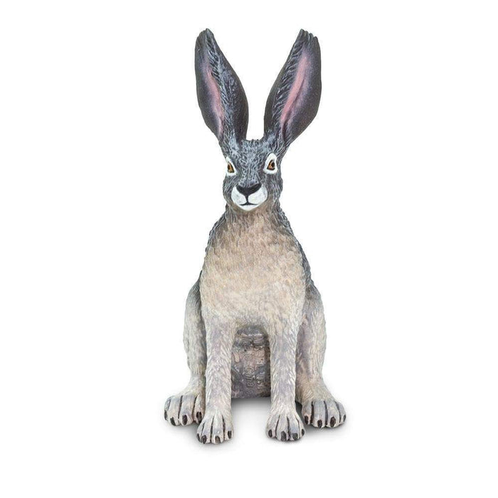 American Desert Hare - Safari Ltd®