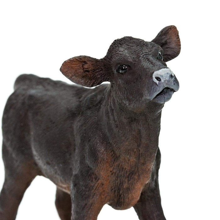 Angus Calf - Safari Ltd®