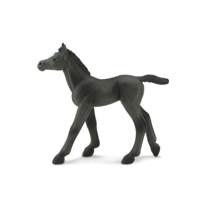 Arabian Foal - Safari Ltd®