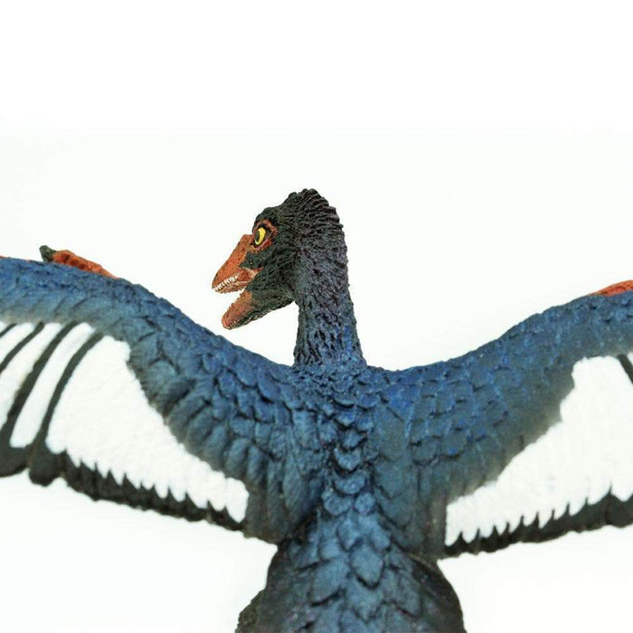 Archaeopteryx Toy | Dinosaur Toys | Safari Ltd.