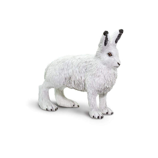 Arctic Hare - Safari Ltd®