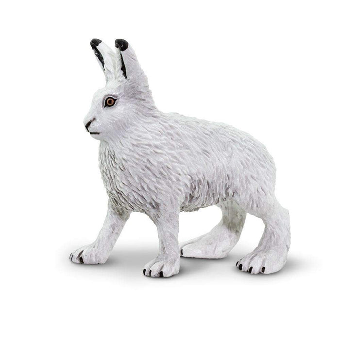 Arctic Hare Toy | Wildlife Animal Toys | Safari Ltd.